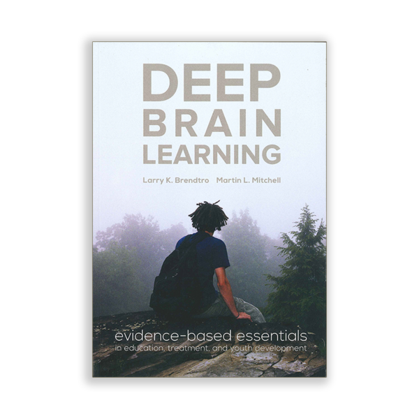 Deep Brain Learning