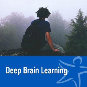 deep brain learning book