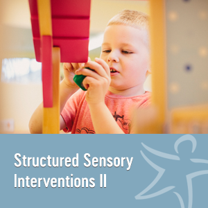 Structured Sensory Interventions II